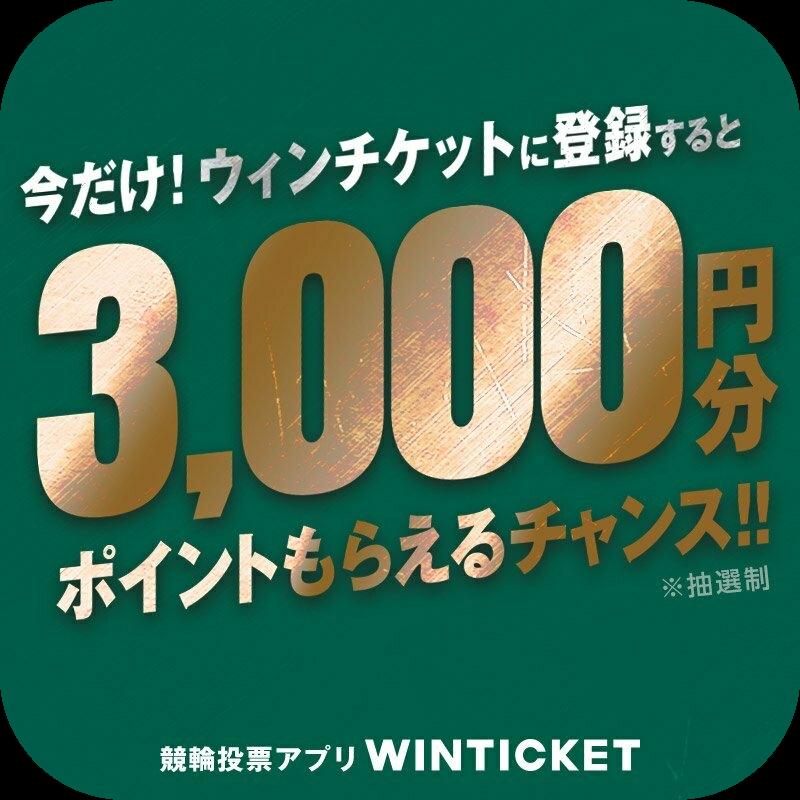 WINTICKET(iOS)【年齢確認後の初回投票】